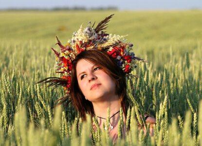 Champs-de-blé-revalorise-les-tiges-pour-fabriqué-des-pailles-réutilisables