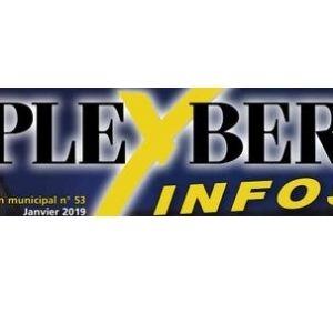 Pleyber info